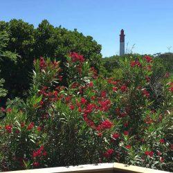 Vue sur le phare depuis la terrasse de la Villa Basque, Villa Caroline au Cap Ferret